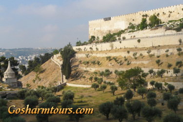 Sharm el Sheikh to Jerusalem and Petra